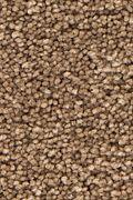 Mohawk Stylish Story I - Velvet Brown Carpet
