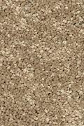 Mohawk Stylish Story I - Turnstone Carpet