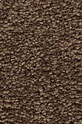 Mohawk Stylish Story I - Cat-Tail Carpet