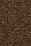 Mohawk Stylish Story I - Saddle Carpet