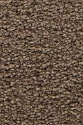 Mohawk Stylish Story I - Rocky Ridge Carpet
