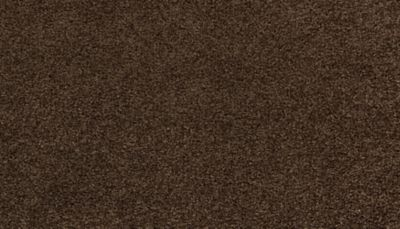 ProductVariant swatch small for Beaten Trail flooring product