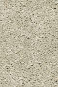 Mohawk Stylish Story I - Early Frost Carpet