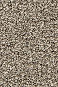 Mohawk Stylish Story I - Iron Bars Carpet