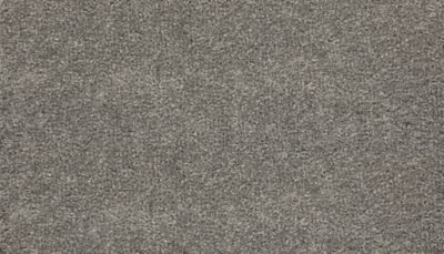 ProductVariant swatch large for Distant Thunder flooring product