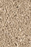 Mohawk Stylish Story II - Early American Carpet