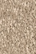 Mohawk Stylish Story II - Native Soil Carpet