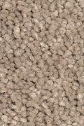 Mohawk Stylish Story II - Twig Carpet
