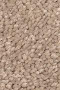 Mohawk Stylish Story II - Velvet Brown Carpet