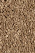 Mohawk Stylish Story II - Sonora Carpet