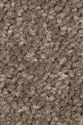 Mohawk Stylish Story II - Rocky Ridge Carpet