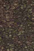 Mohawk Stylish Story II - Beaten Trail Carpet
