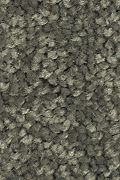 Mohawk Stylish Story III - Dried Moss Carpet