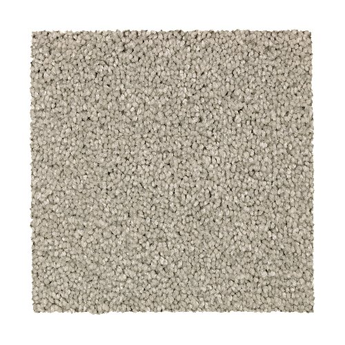Treasure Valley in Timeless - Carpet by Mohawk Flooring