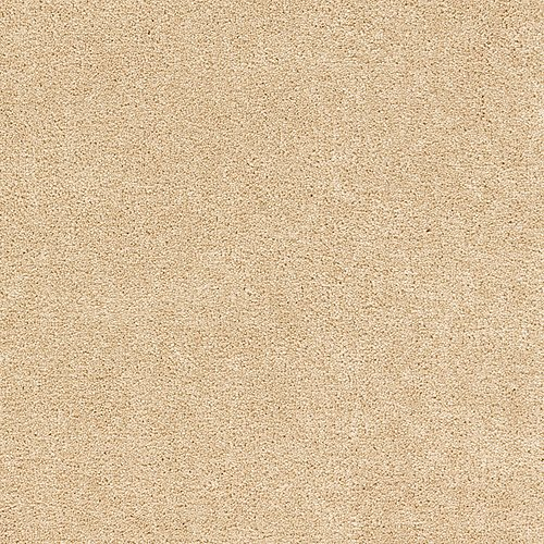 Treasure Valley in Autumn Ash - Carpet by Mohawk Flooring