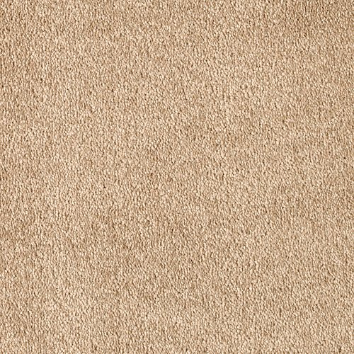 Treasure Valley in Honey Butter - Carpet by Mohawk Flooring