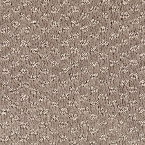 Dynamo Taupe Treasure 859