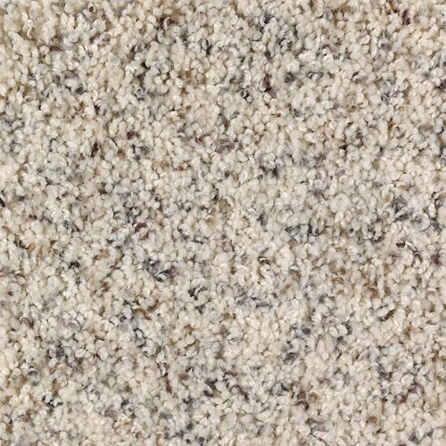 Mohawk Industries Fine Balance Fleck Softened Ash Carpet