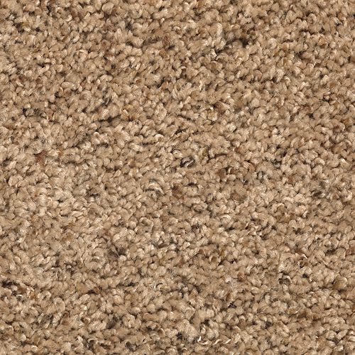 Mohawk Industries Addison Park Fleck 06 Carpet Rochester
