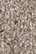 Mohawk Tonal Luxury - Woodstained Carpet