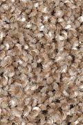 Mohawk Tonal Luxury - Warm Cider Carpet