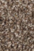 Mohawk Tonal Luxury - Autumn Glimmer Carpet