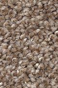 Mohawk Tonal Luxury - Earth Jewels Carpet