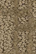 Mohawk Metro Charm - 4 Carpet