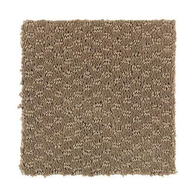 Delmar Estates in 4 - Carpet by Mohawk Flooring