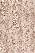 Mohawk Sculptured Touch - Pralines Carpet