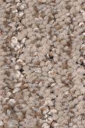 Mohawk Sculptured Touch - Bridle Carpet
