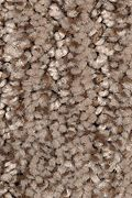Mohawk Sculptured Touch - Honeyed Bronze Carpet