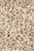 Mohawk Tonal Allure - Velvet Shimmer Carpet