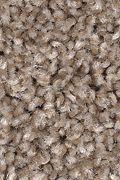 Mohawk Tonal Allure - Woodstained Carpet