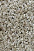 Mohawk Tonal Allure - Casual Charm Carpet