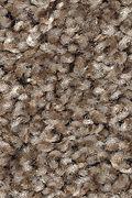 Mohawk Tonal Allure - Earth Jewels Carpet