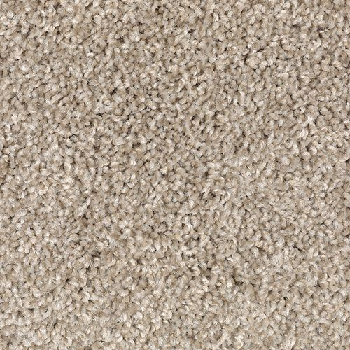 Fabric Of Life Beige Twill 505