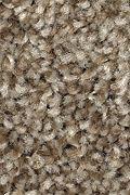 Mohawk Tonal Allure - Verona Carpet
