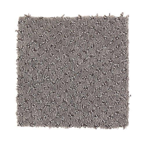 Hidden Treasure in Hearth Beige - Carpet by Mohawk Flooring