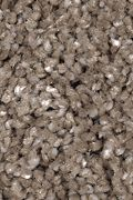 Mohawk Tranquil View - Ashwood Carpet