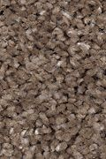 Mohawk Tranquil View - Tweed Carpet