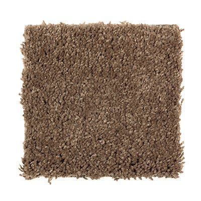 ProductVariant swatch small for Acorn Trail flooring product