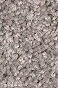 Mohawk Prestige Style - Ancestral Haze Carpet