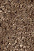 Mohawk Prestige Style - Acorn Trail Carpet