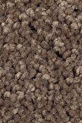 Mohawk Prestige Style - Mochachino Carpet