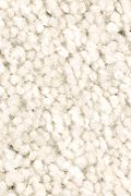 Mohawk Prime Design - Tibetan Jasmine Carpet