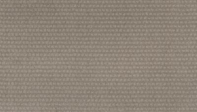 ProductVariant swatch large for Sculpture Grey flooring product