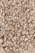 Mohawk Vintage Luxury - Bittersweet Carpet