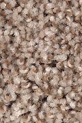 Mohawk Vintage Luxury - Americana Carpet