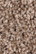Mohawk Vintage Luxury - Moroccan Spice Carpet